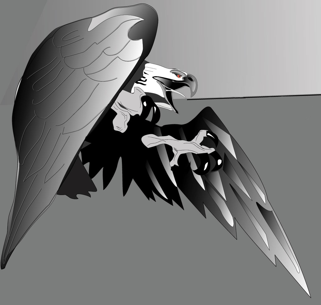 Vektor-Illustration-Adler.PNG
